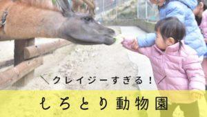 香川【しろとり動物園】がクレイジーすぎる!子連れで行ってみた口コミ